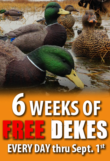 6 weeks of free dekes_17-fall_refuge.jpg