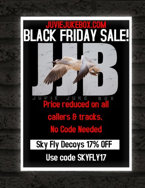 Copy of Black Friday(1).jpg