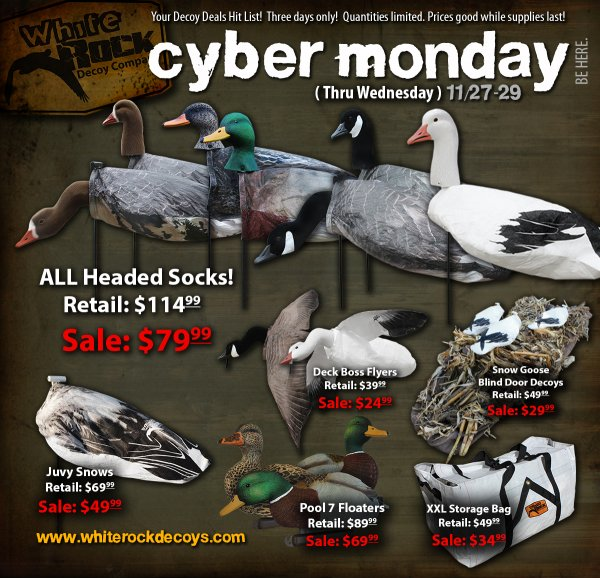 Cyber Monday Flyer17_forums.jpg
