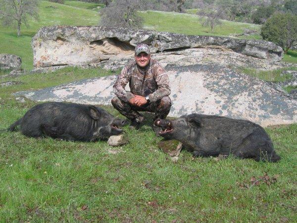 double pigs7.JPG