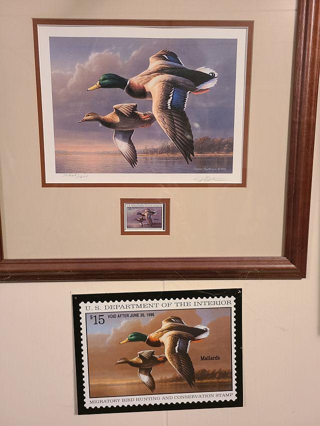 Duck Stamps.jpg