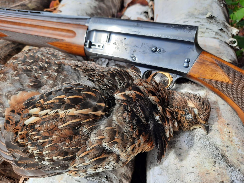 rangeley grouse4.jpg