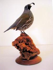 single quail.JPG