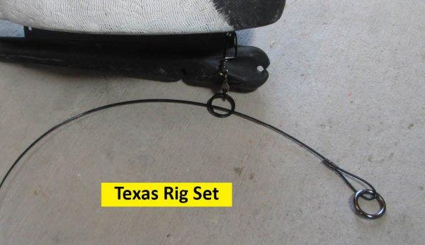 Texas Rig Set.jpg