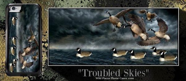 troubled skies.jpg